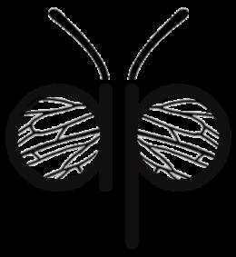 Metode de introducere a matcilor – Apis Donau